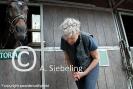 Training Paard en Veiligheid - A. Siebeling_5